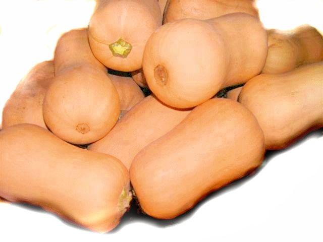 organic butternut pumpkin